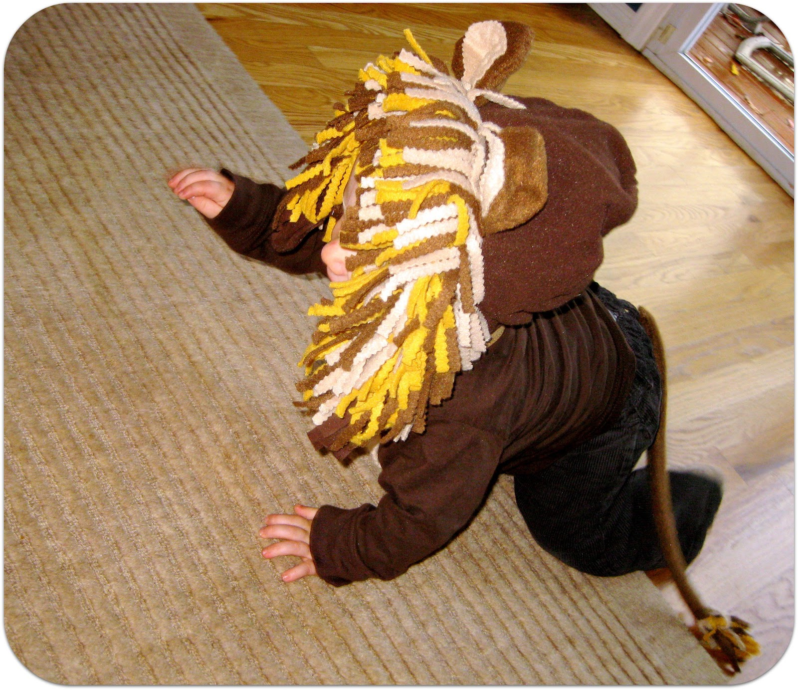 DIY Lion Costume http://www.tryitmom.com/2011/10/super-easy-diy-baby-lion-costume.html