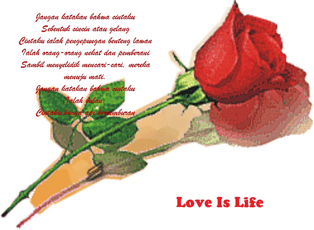 5 Puisi Romantis Tentang Cinta