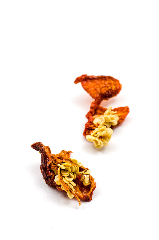 Dry red habanero chili seeds on paper