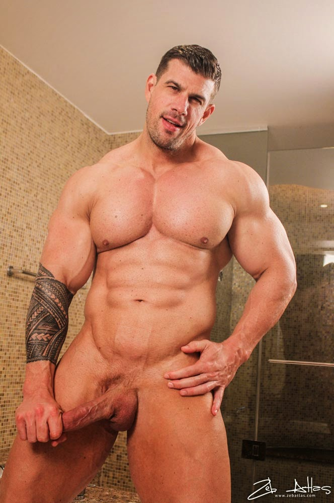 Zeb Atlas Hairy