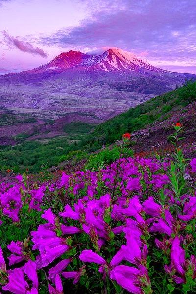 Mount St. Helens in Washington