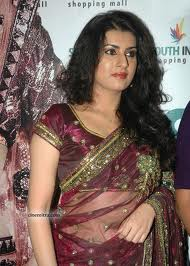 HINDI ACTRESS SAREE PICTURE