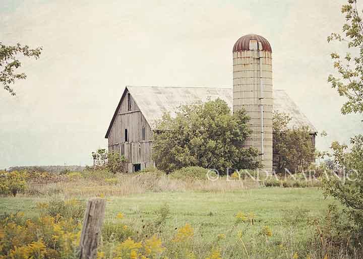 Rustic Barns simple things: rustic barns