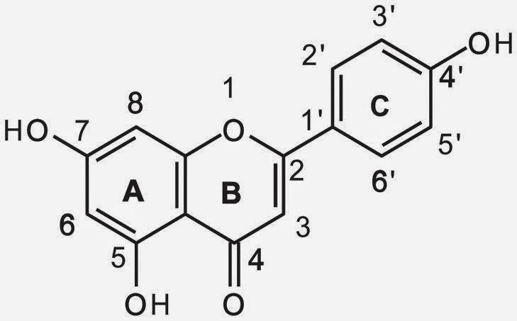 apigenin chemical formula