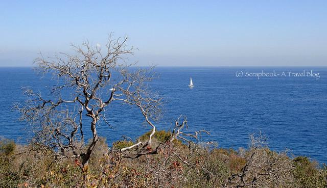 Santa Catalina Island and blue ocean