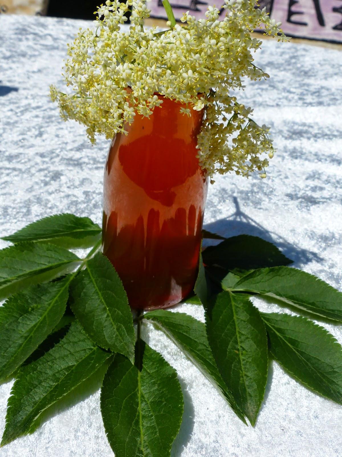 Holunderblüten ~ Essig mit Apfel & Orange
