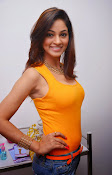 Actress Shilpi Sharma Hot Photo shoot-thumbnail-6