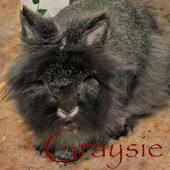 Graysie