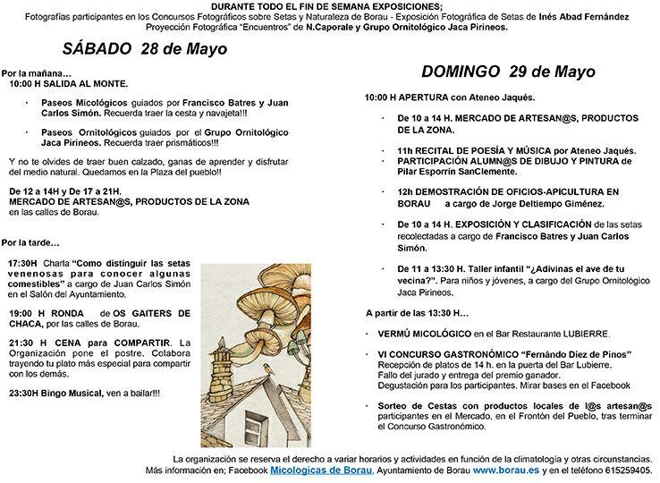 JORNADAS MICOLÓGICAS DE BORAU
