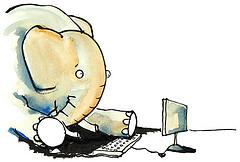 elephant on computer