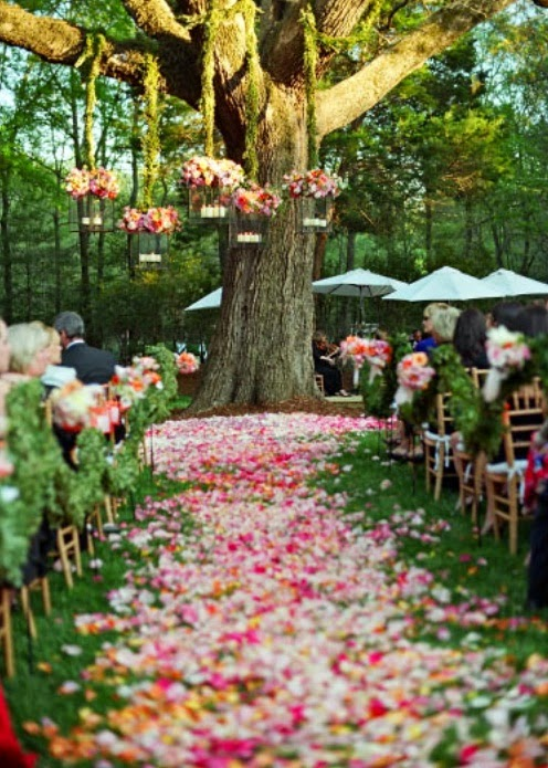 Simple outdoor wedding decorations unique wedding ideas for Backyard wedding decoration ideas