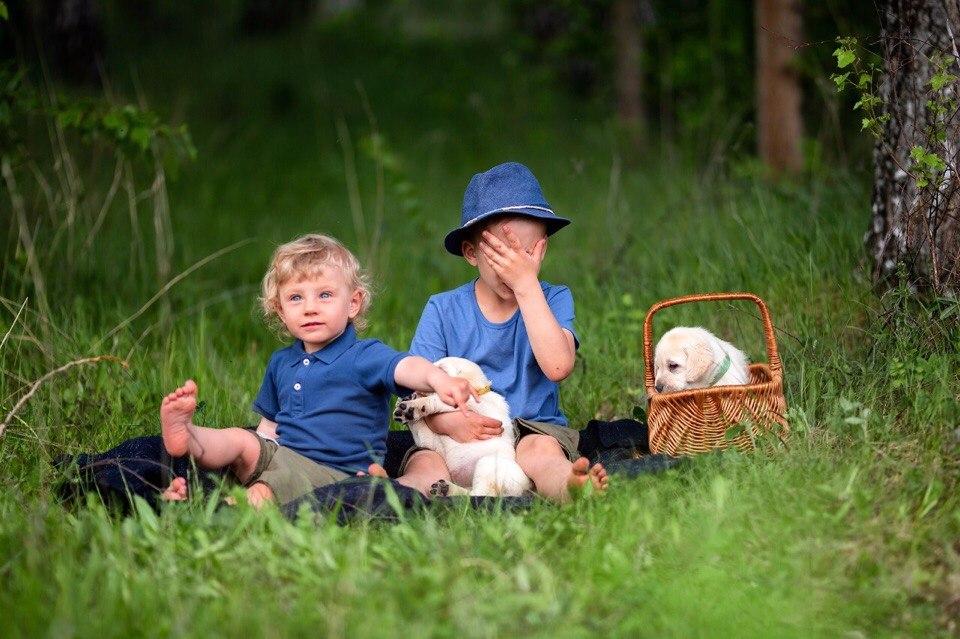 Мои детки и щенки lali's bear