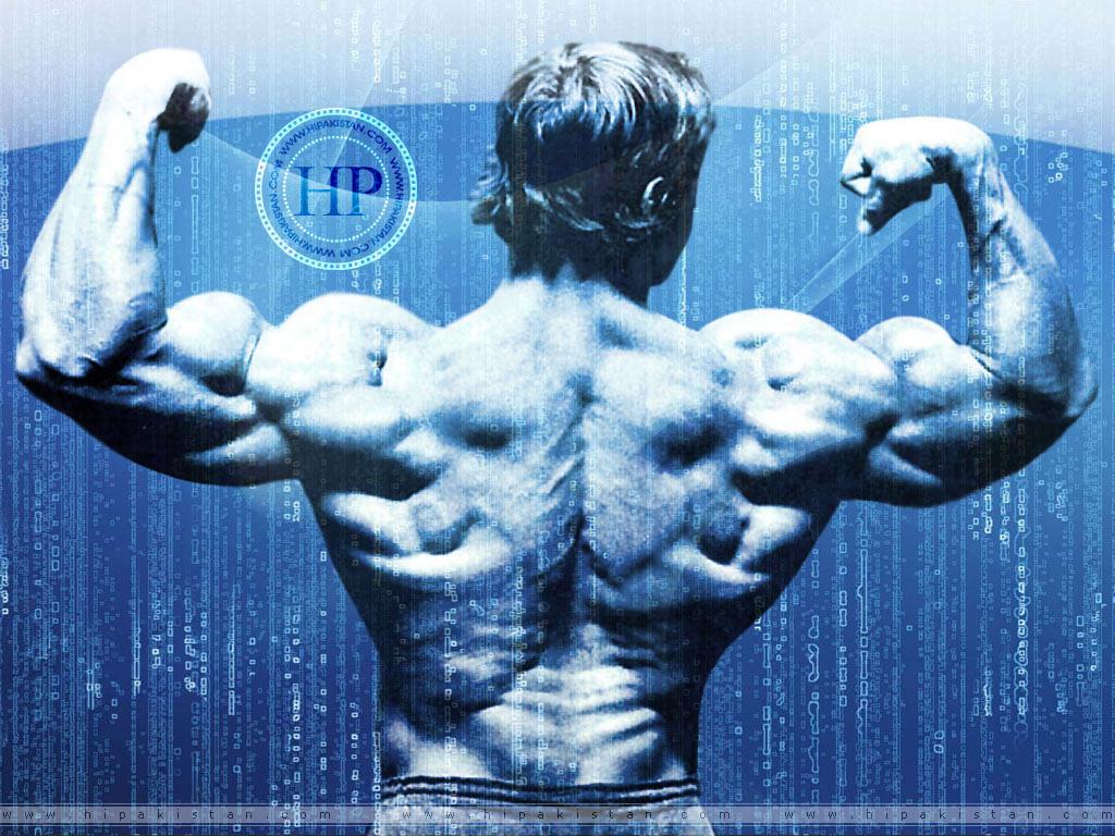http://2.bp.blogspot.com/-99mESKq3zdU/TfHvjFpYVEI/AAAAAAAAADY/E_6QYmMSzNA/s1600/hipakistan_bodybuilding21.jpg