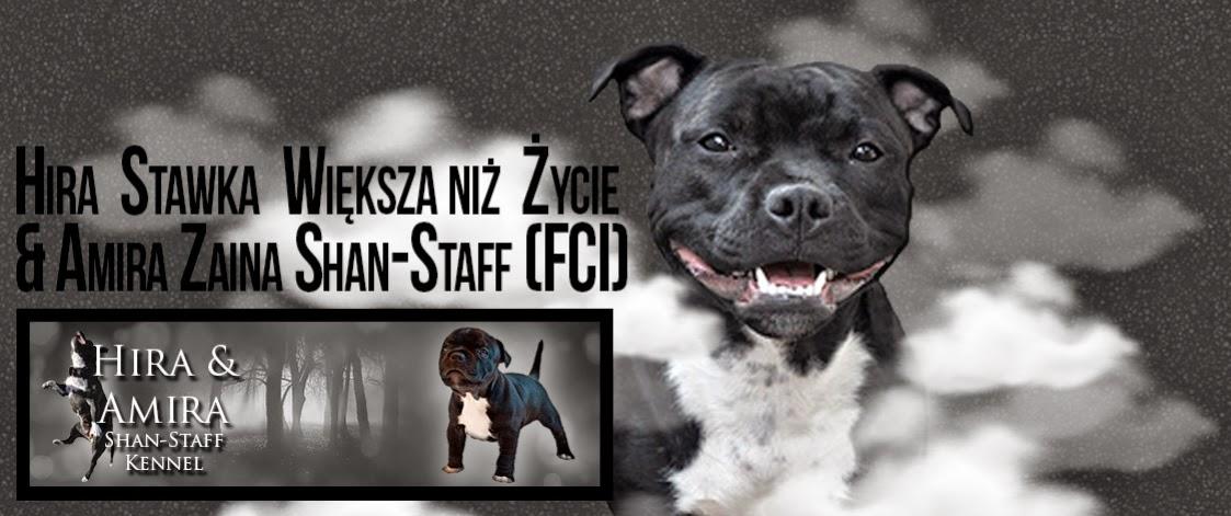 Hira Stawka Większa niż Życie & Amira Zaina Shan-Staff (FCI)