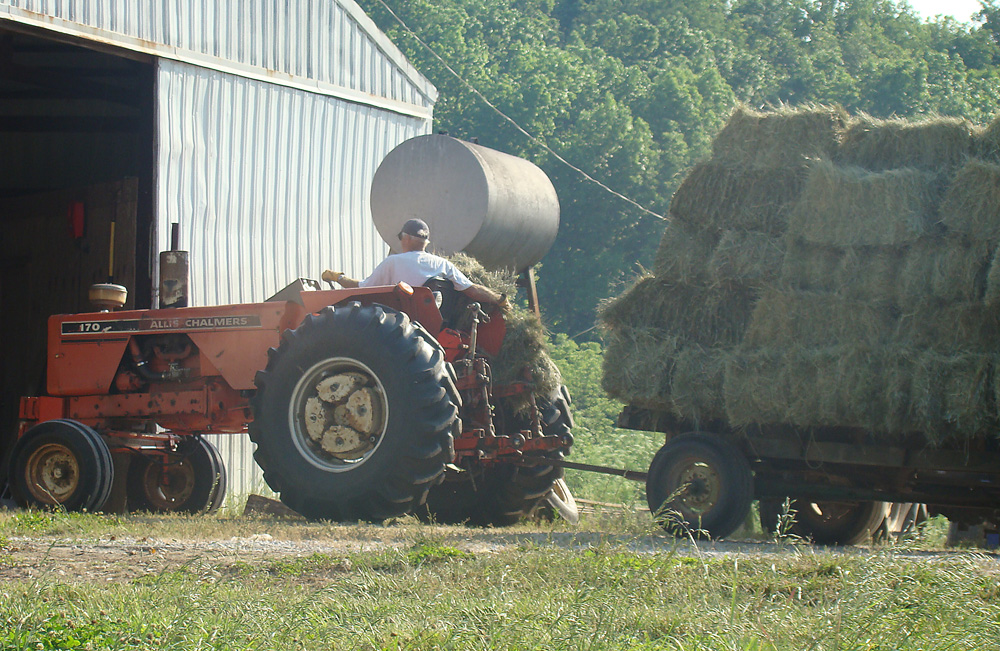 Tractor Pulled Wagon : Rurification hay