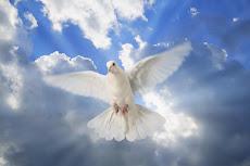 Esse blog é pela paz!