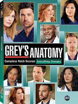 Anatomia de Grey Temporada 9