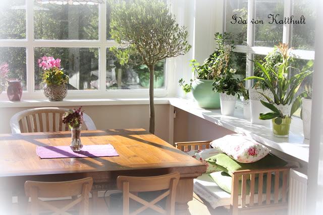 idas bloghaus im wintergarten. Black Bedroom Furniture Sets. Home Design Ideas