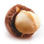 Macadamia m Alimentos tóxicos para cães