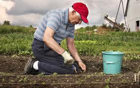 hombre sembrando