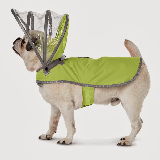 Coolest Dog Products and Gadgets (15) 5