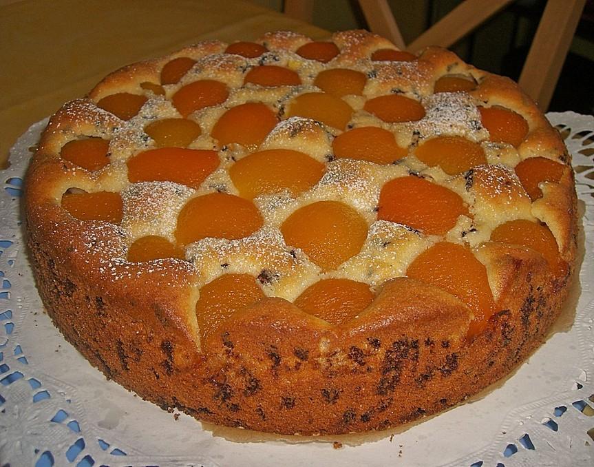 Backen Kochen Geniessen Ameisen Marillenkuchen Mit Puddingfullung
