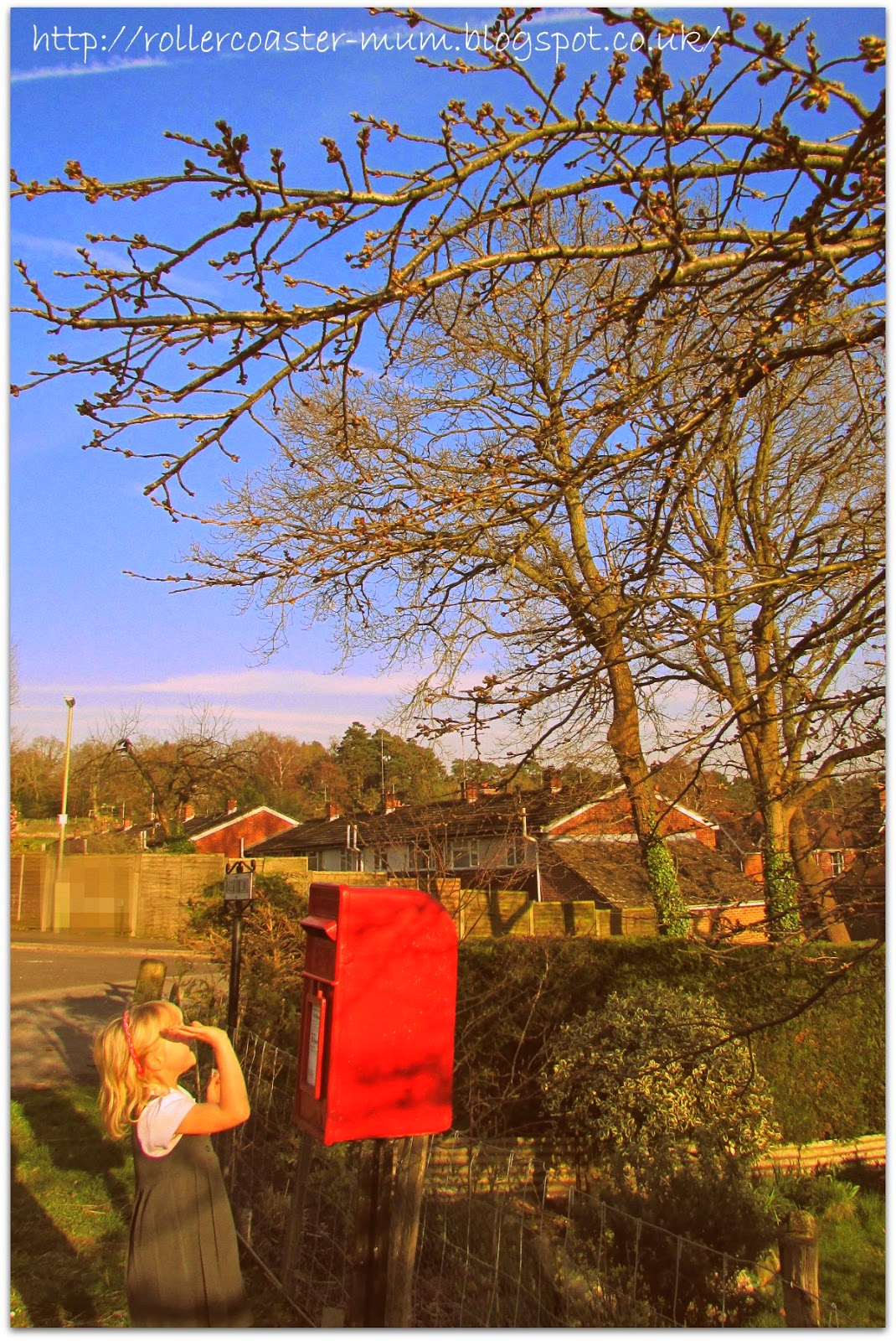 spring sunshine for the school run