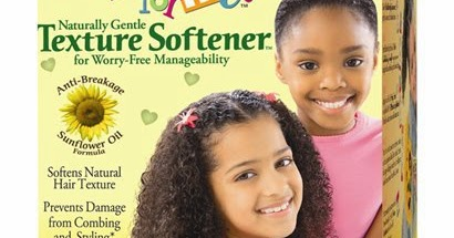The Mane Objective Just For Mes Texture Softener And