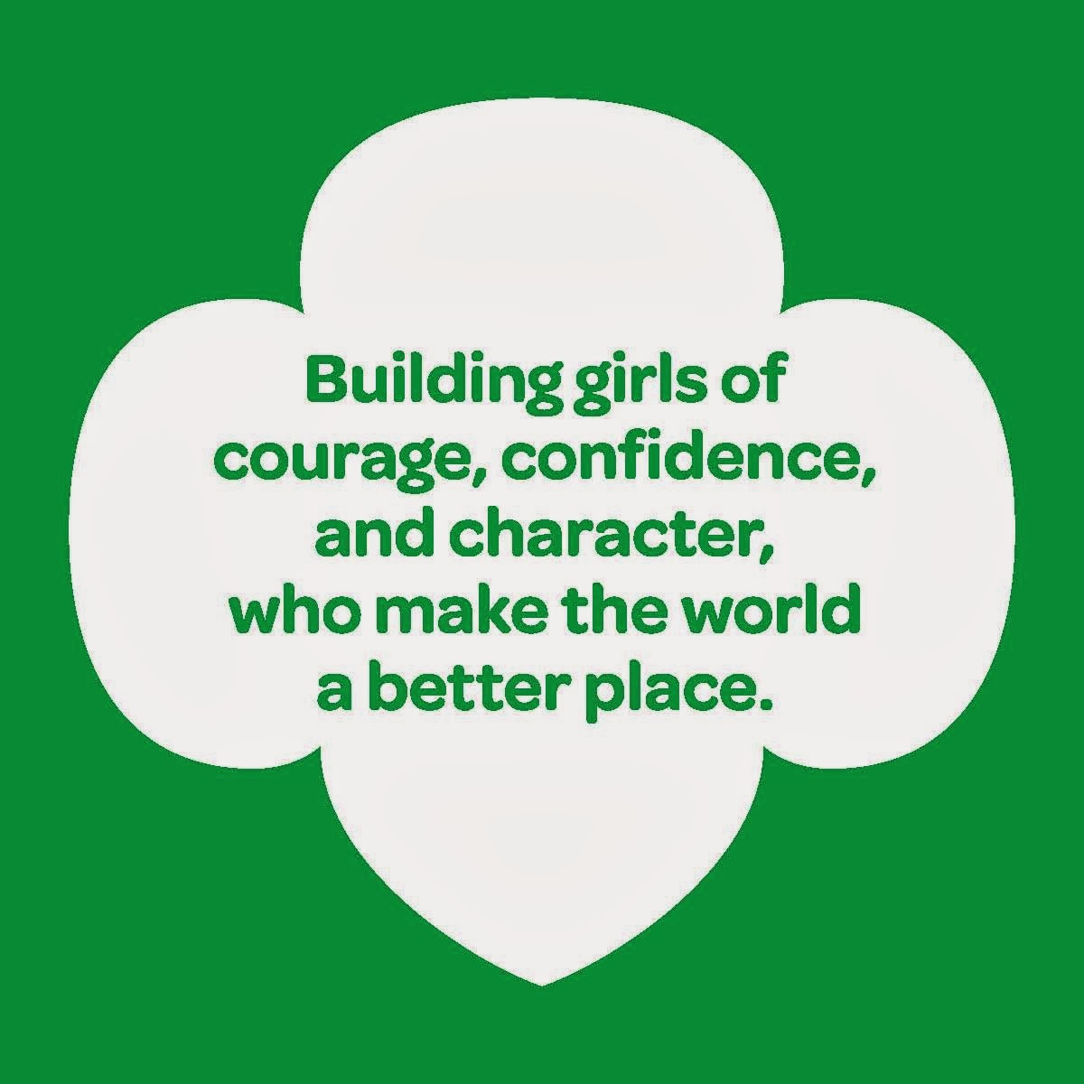 girl scout blog january 2014