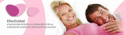 ovobank spain el primer banco de ovuloas de europa