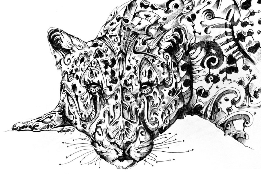 14-Leopard-René-Campbell-Art-in-Animal-Doodle-Drawings-www-designstack-co