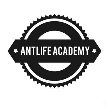 ANTLIFE ACADEMY