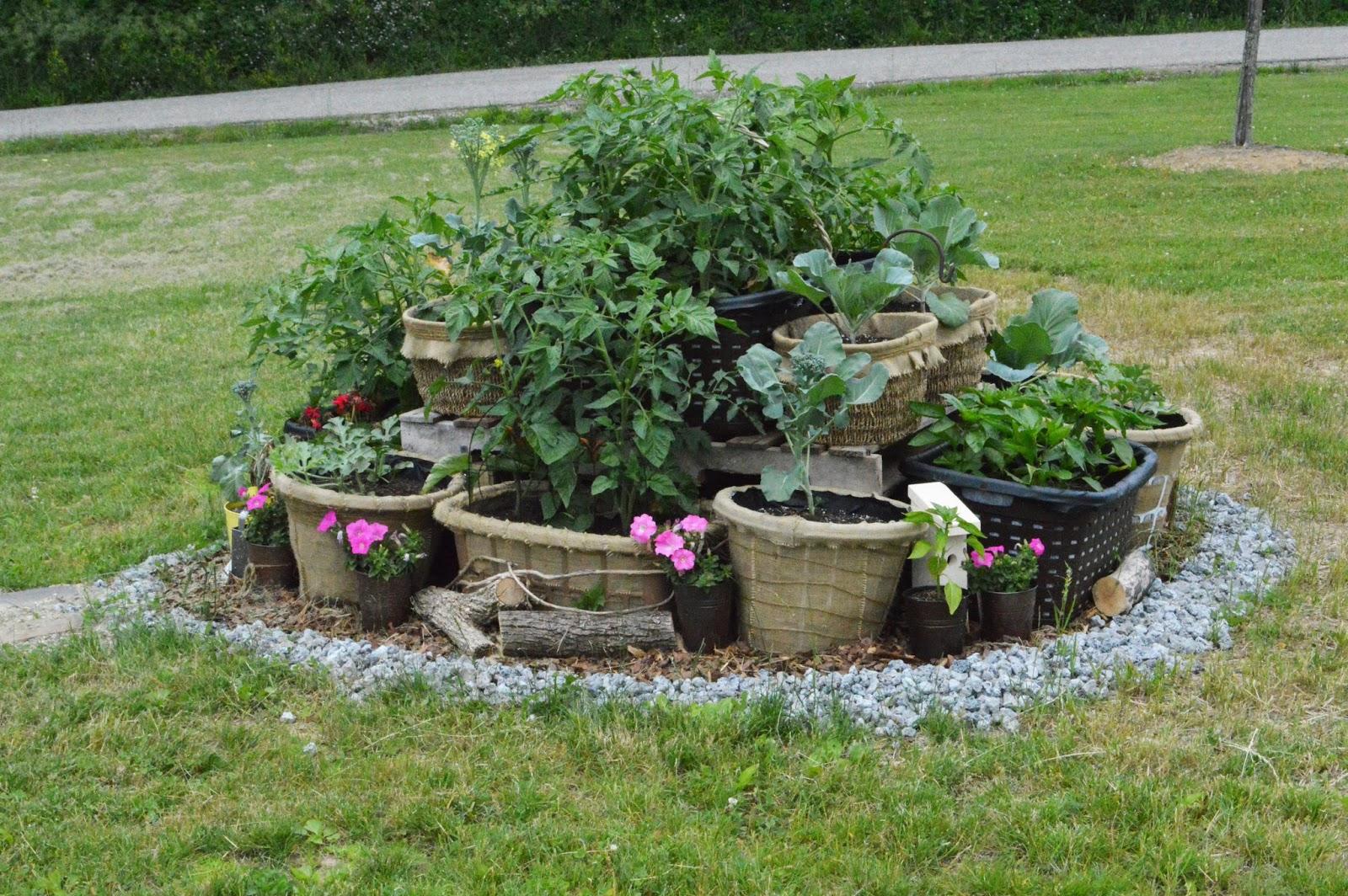 The chic burlap boutique blog laundry basket gardening how to laundry basket gardening izmirmasajfo