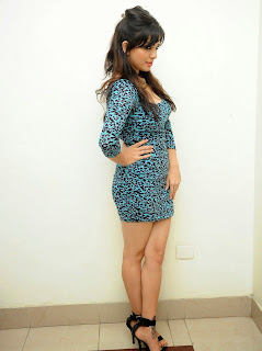 Actress Parinidhi  Pictures in Short Dress at Rowdy Fellow Audio Launch  8