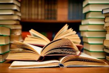 Mis amigos los libros