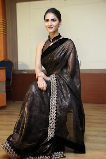 vaani kapoor new  stills in black saree(11)