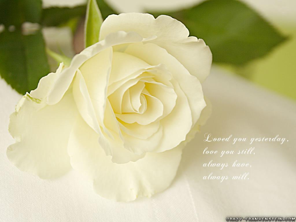http://2.bp.blogspot.com/-9E6IVRvhDlQ/Tz5p5IhMwxI/AAAAAAAACBc/ZR7WFT1_5AI/s1600/love-wallpaper07.jpg