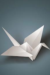 Origami Mundo Arte y Ciência