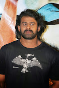 Rebel star Prabhas latest Photos at Basanthi event-thumbnail-8