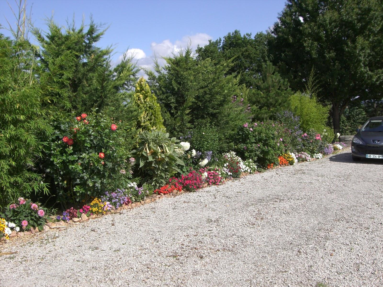 Roses du jardin ch neland l 39 t 2009 - Jardin de chen ...