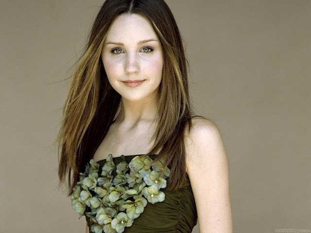 Amanda Bynes HD Wallpaper-01