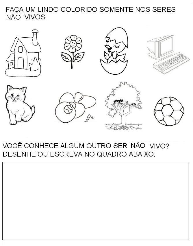 SERES VIVOS E NÃO VIVOS - 35 ATIVIDADES EXERCÍCIOS DESENHOS ...