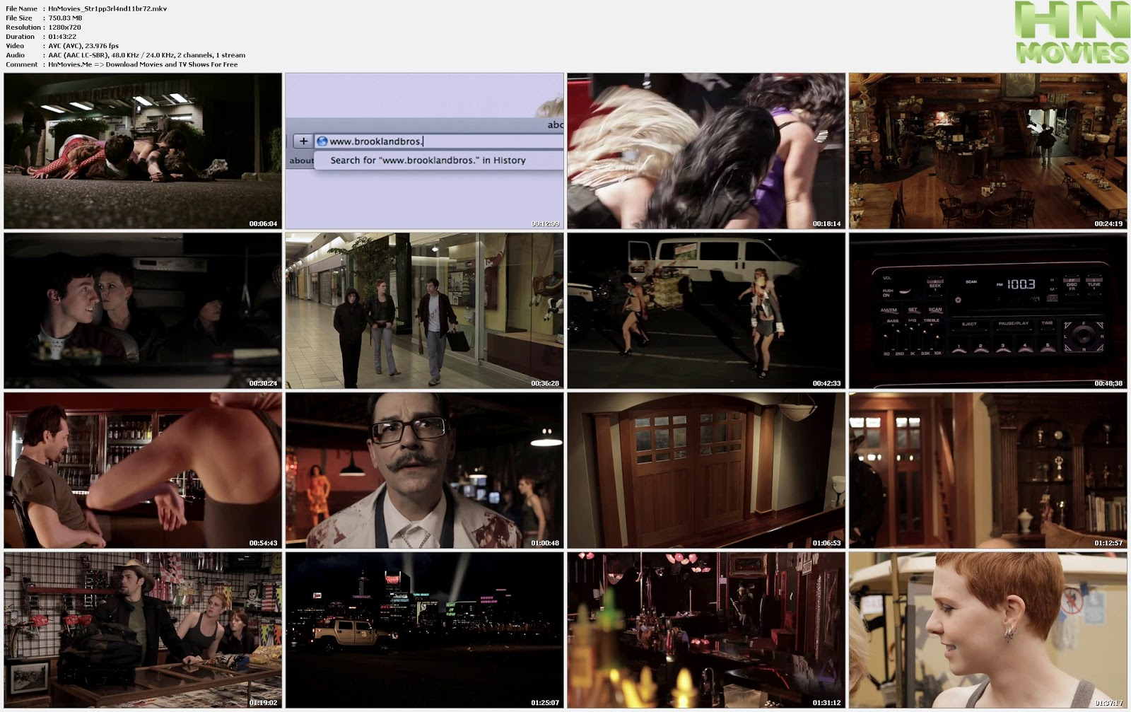 Stripperland (2011) BluRay 720p BRRip 750MB