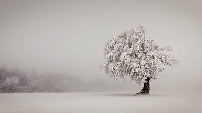 Feliz Solsticio de Invierno