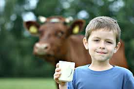 الأطفال وشرب اللبن، تشجيع الطفل علي شرب الحليب كل يوم