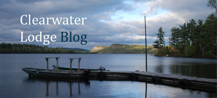 Clearwater Lodge Blog