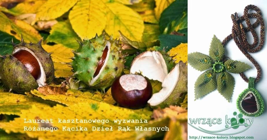 Wyróżnienie w kasztanowym wyzwaniu Różanego Kącika Dzieł Rąk Własnych