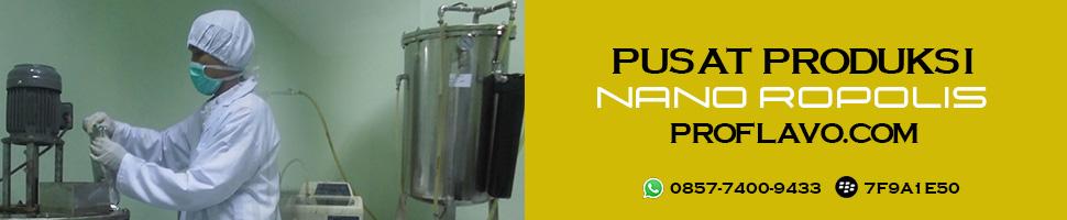produksi Nano Propolis