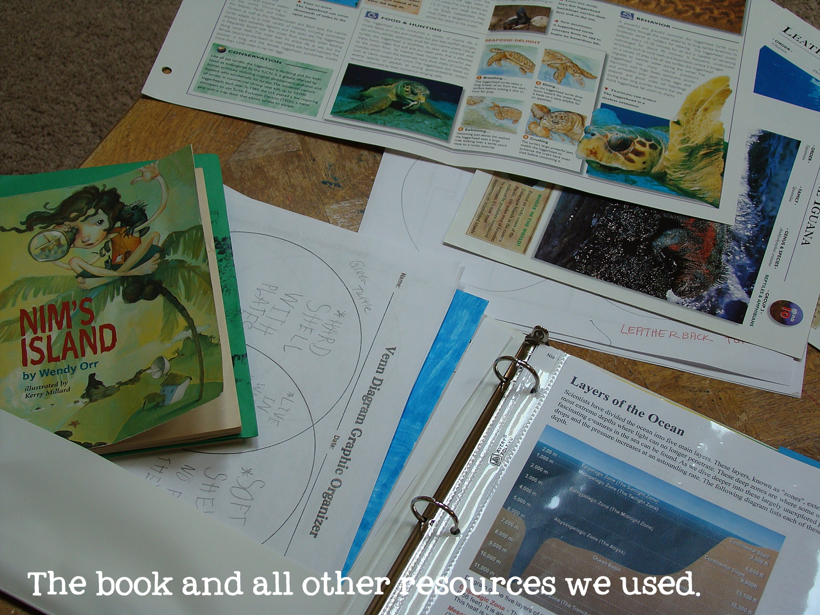 Creating Treasures: Nim\'s Island - how we did our first Unit Study ...