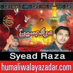 http://www.humaliwalayazadar.com/2014/11/syead-raza-nohay-2015.html